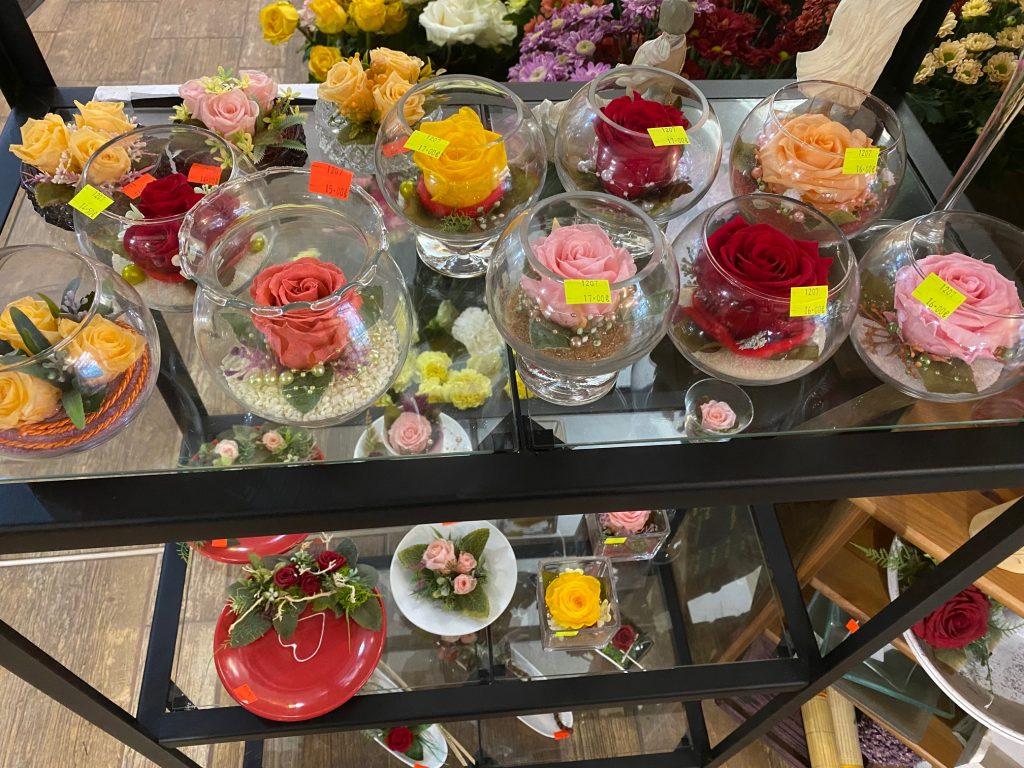 Predajňa - stabilizované ruže
